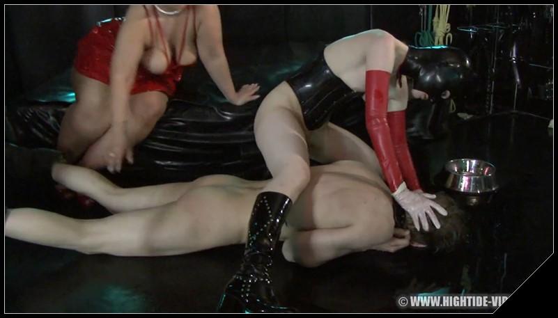 Liking vigina sex positions
