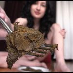 DirtyMaryan Mistress Feeds Toilet Slave With Her Delicious Shit
