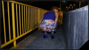 MessyPaula – Beside The Road A Lovely Poo