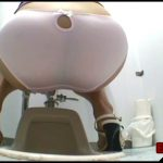 Japanese Toilet Farting and Pooping 2[Scat solo, shit,defecation, pissing, farting]