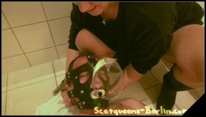 Three ladies and one toiletslave part 1[Scat, pissing, shit,  ,Femdom ,Toilet Slavery, shit in mouth,Drink pee, spitting, Domination, Eat shit , Humiliations, Groups-Couples,Vomiting]