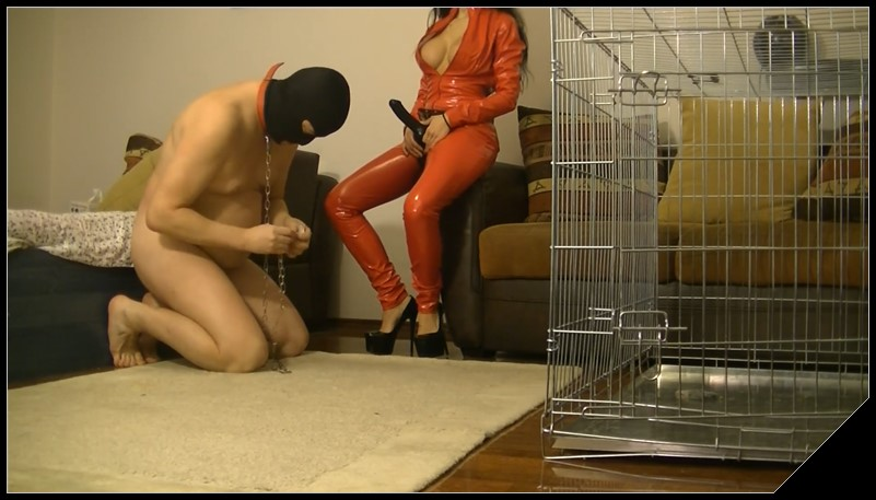 My puppy brought me a present[Scat, Femdom ,Toilet Slavery,Fingering,Domination, Humiliations, Oral-Anal Sex]